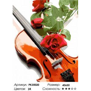 Сложность и количество цветов Скрипка и розы Раскраска картина по номерам на холсте PK35020