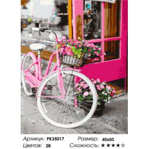 Сложность и количество цветов Розовый велосипед Раскраска картина по номерам на холсте PK35017