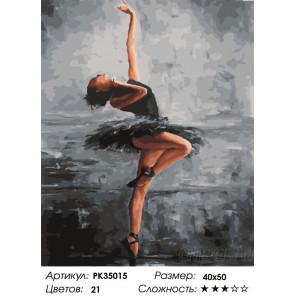 Сложность и количество цветов Балерина в черном Раскраска картина по номерам на холсте PK35015
