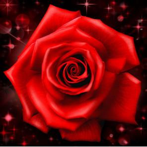 Сверкающая роза Алмазная вышивка мозаика АЖ-1785