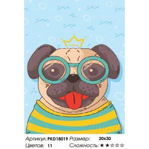 Сложность и количество цветов Мопсик в очках Раскраска картина по номерам на холсте PKD18019