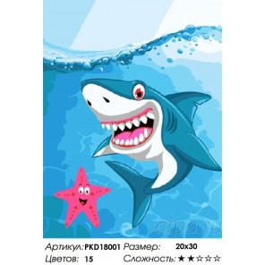 Сложность и количество цветов Улыбка акулы Раскраска картина по номерам на холсте PKD18001