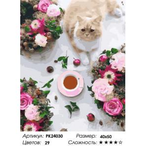 Сложность и количество цветов Разноцветный завтрак Раскраска картина по номерам на холсте PK24030