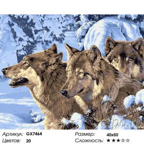 Сложность и количество цветов Суровой зимой Раскраска картина по номерам на холсте GX7464