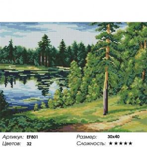 Сложность и количество цветов Лесное озеро Алмазная мозаика вышивка на подрамнике EF801