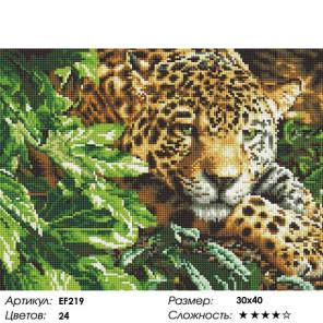 Сложность и количество цветов Зеленоглазый леопард Алмазная мозаика вышивка на подрамнике EF219