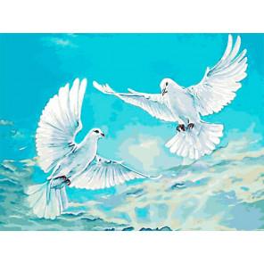 Голуби в небесной синеве Раскраска картина по номерам на холсте EX5947