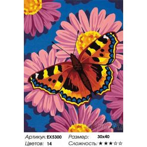 Сложность и количество цветов Цветы и бабочки Раскраска картина по номерам на холсте EX5300