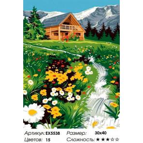 Сложность и количество цветов Тропинка к дому Раскраска картина по номерам на холсте EX5538