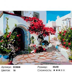 Сложность и количество цветов Греческая улочка Раскраска картина по номерам на холсте EX5838