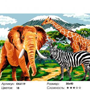 Сложность и количество цветов Африка Раскраска картина по номерам на холсте EX6119