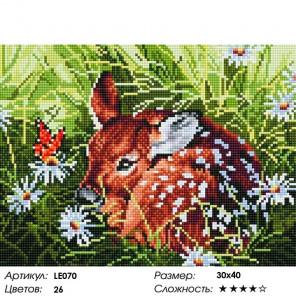 Сложность и количество цветов Oлененок Алмазная мозаика на подрамнике LE070