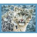 Снежный барс Алмазная мозаика на подрамнике QA200058
