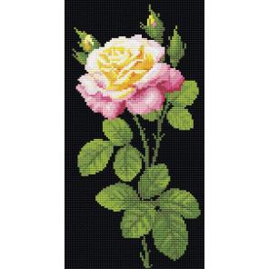 Дивный цветок Алмазная вышивка мозаика Риолис АМ0024
