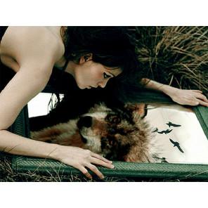 Волчица Раскраска картина по номерам на холсте с цветной схемой KK0030