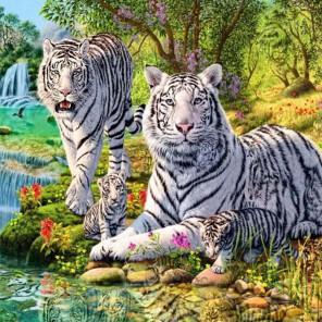 Семейство белых тигров Раскраска картина по номерам на холсте KH0367