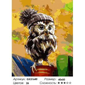 Сложность и количество цветов Совёнок в шапке с помпоном Раскраска картина по номерам на холсте GX31649