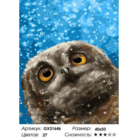 GX31646 Сова и снежинки Раскраска картина по номерам на ...