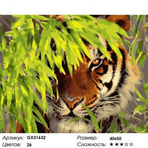 Сложность и количество цветов Тигр в укрытии Раскраска картина по номерам на холсте GX31632