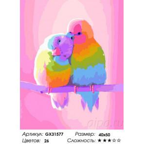 Сложность и количество цветов Красочные попугайчики Раскраска картина по номерам на холсте GX31577