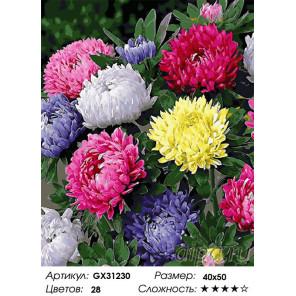 Сложность и количество цветов Астры Раскраска картина по номерам на холсте GX31230