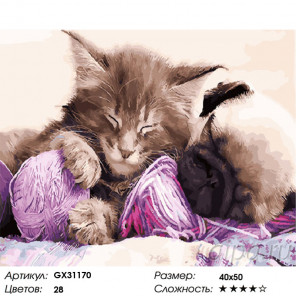 Сложность и количество цветов Котенок, щенок и клубок Раскраска картина по номерам на холсте GX31170