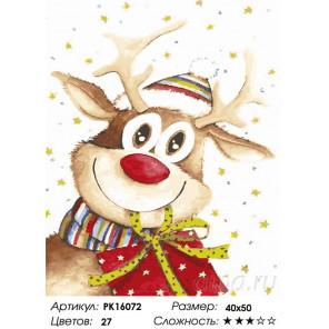 Сложность и количество цветов Рождественский подарок Раскраска картина по номерам на холсте PK16072
