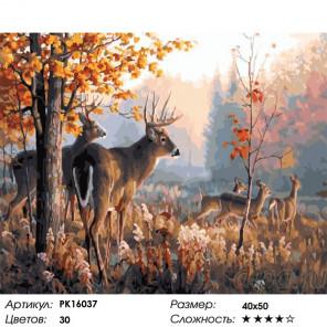 Сложность и количество цветов Олень в лесу Раскраска картина по номерам на холсте PK16037