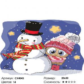 Сложность и количество цветов Снеговик и совёнок Раскраска картина по номерам на холсте CX4043