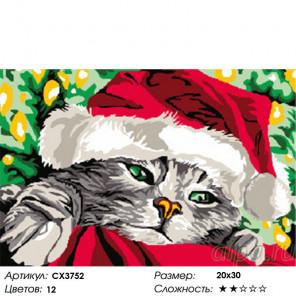 Сложность и количество цветов Санта-Кот Раскраска картина по номерам на холсте CX3752