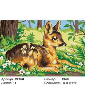 Сложность и количество цветов Оленёнок Раскраска картина по номерам на холсте CX3609