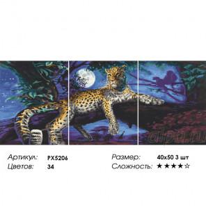 Сложность и количество цветов Ночное ложе леопарда Триптих Раскраска картина по номерам на холсте PX5206
