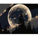 Сказочная луна Раскраска картина по номерам на холсте Z-GX30850