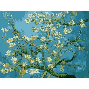 Цветы миндаля Раскраска картина по номерам на холсте Z-EX5216