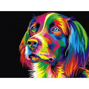 Радужный пёс Раскраска картина по номерам на холсте Z-EX5251