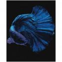 Синяя рыбка Раскраска картина по номерам на холсте