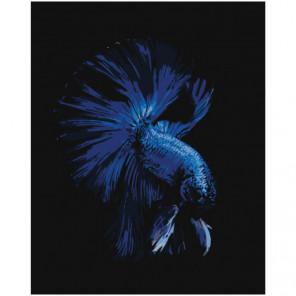 Сапфировая рыбка Раскраска картина по номерам на холсте