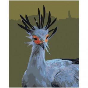 Птица секретарь 80х100 Раскраска картина по номерам на холсте