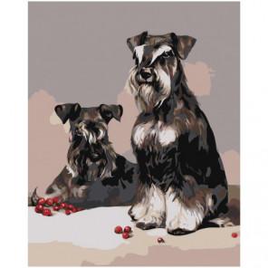 Собаки. Шнауцеры Раскраска картина по номерам на холсте