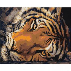 Голова тигра 80х100 Раскраска картина по номерам на холсте