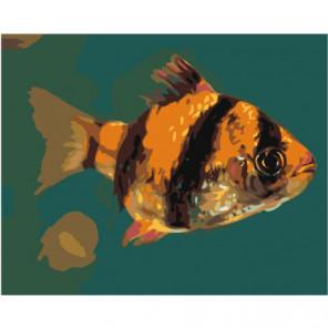 Желто-черная рыбка 80х100 Раскраска картина по номерам на холсте