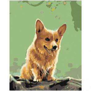 Собака Корги 100х125 Раскраска картина по номерам на холсте