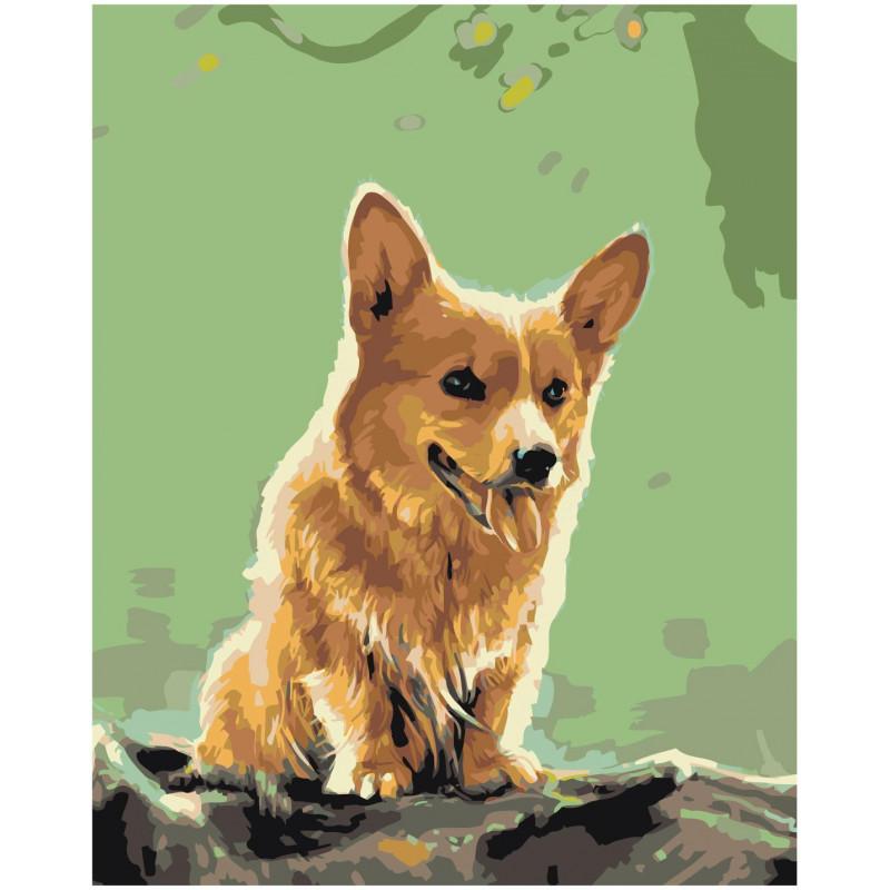 Собака Корги Раскраска картина по номерам на холсте Z ...