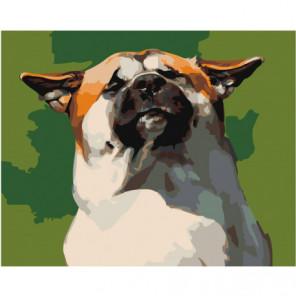 Довольный пёс Раскраска картина по номерам на холсте