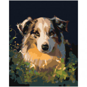Собачий взгляд 80х100 Раскраска картина по номерам на холсте