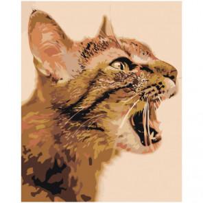Кошачье мяу Раскраска картина по номерам на холсте