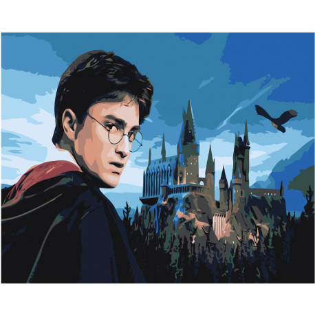 Гарри Поттер Раскраска картина по номерам на холсте Z ...