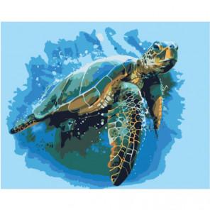 Морская черепаха Раскраска картина по номерам на холсте