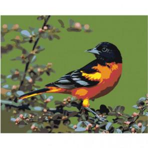Птица Раскраска картина по номерам на холсте