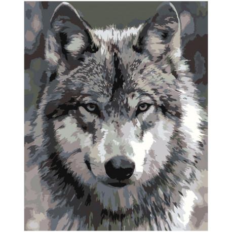 Серый волк Раскраска картина по номерам на холсте Z-AB312 ...